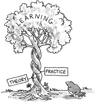CBSE theory and practical