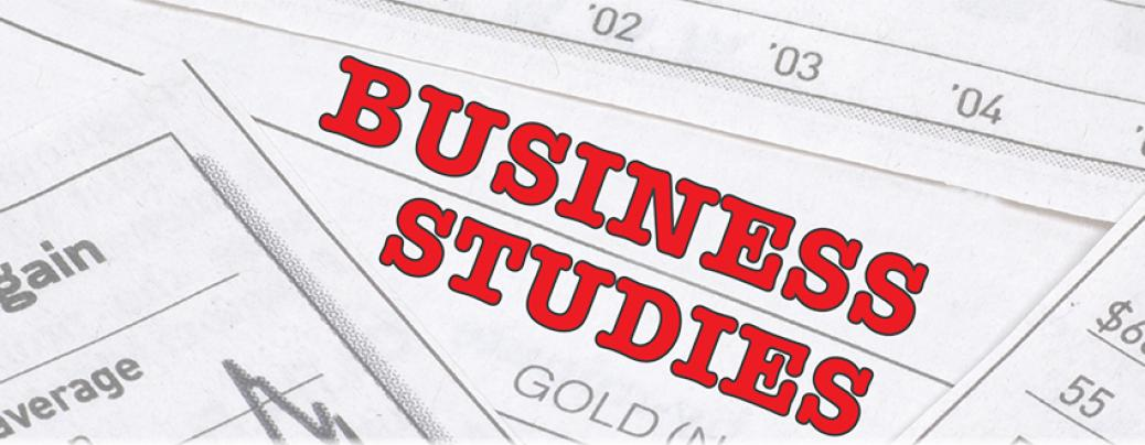 cbse sample papers for class business studies