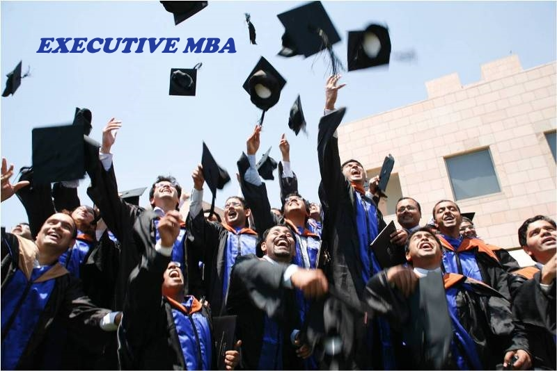 Best Institute For Executive MBA in India