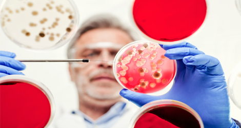 Microbiology Careers: Courses, Colleges, Jobs & Salary