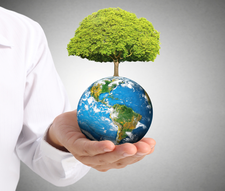 MBA degree in Environmental Management